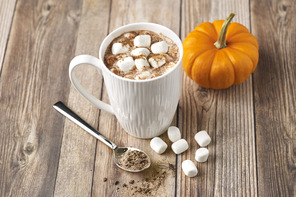 Pumpkin Spice-Hot Chocolate Mix