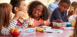 High Protein School Lunch Ideas for the Kids
